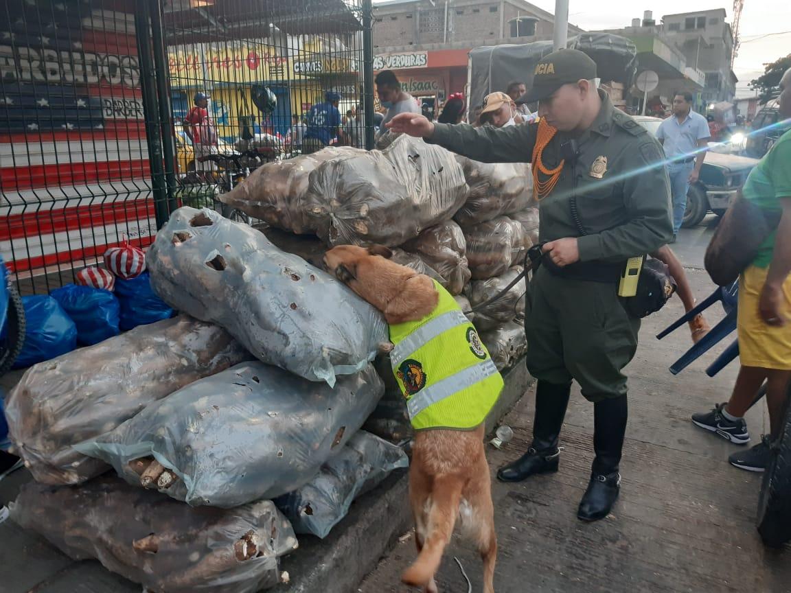 Operativos de control por cuarentena entregan positivos resultados en Santa Marta