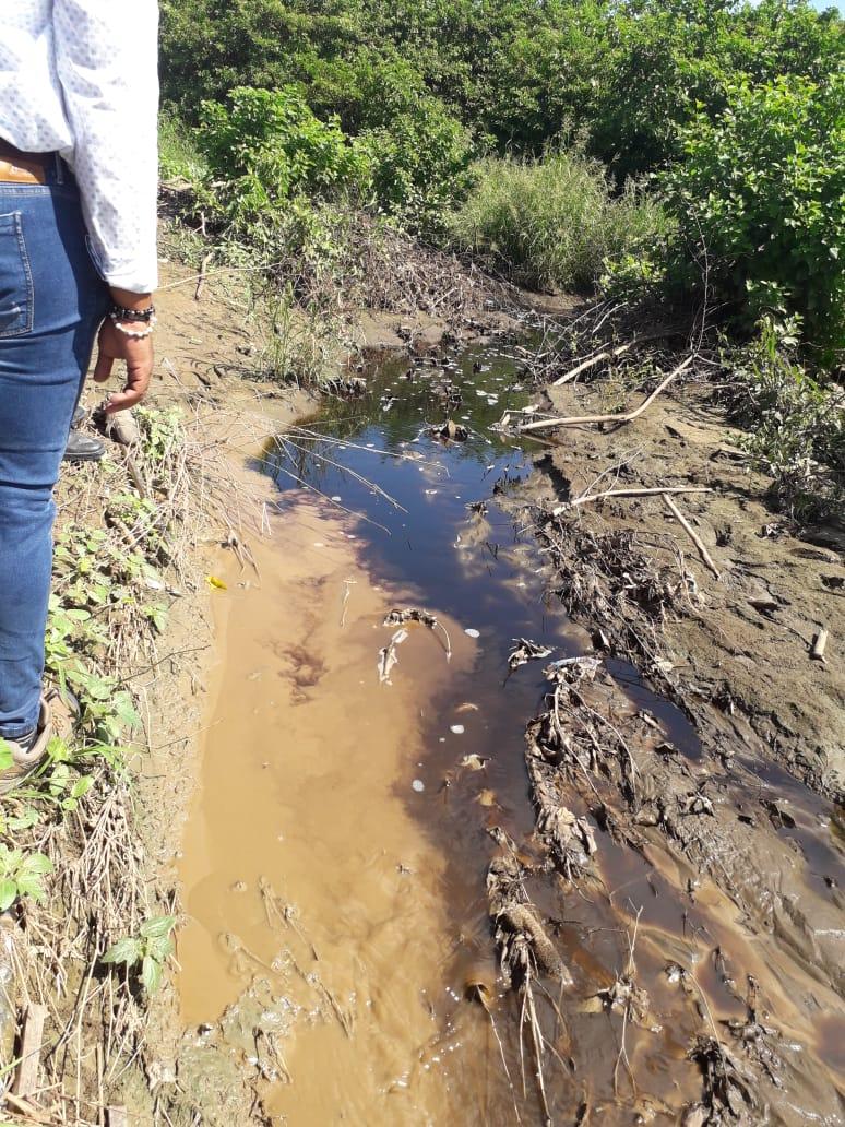 Dadsa y Essmar multarían a Interaseo por vertimiento de lixiviados en Palangana