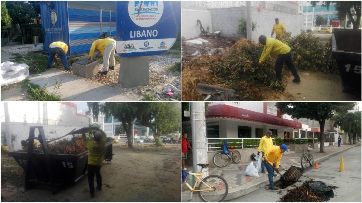 Essmar retiró 22 toneladas de material vegetal e inservible arrojados en la vía pública