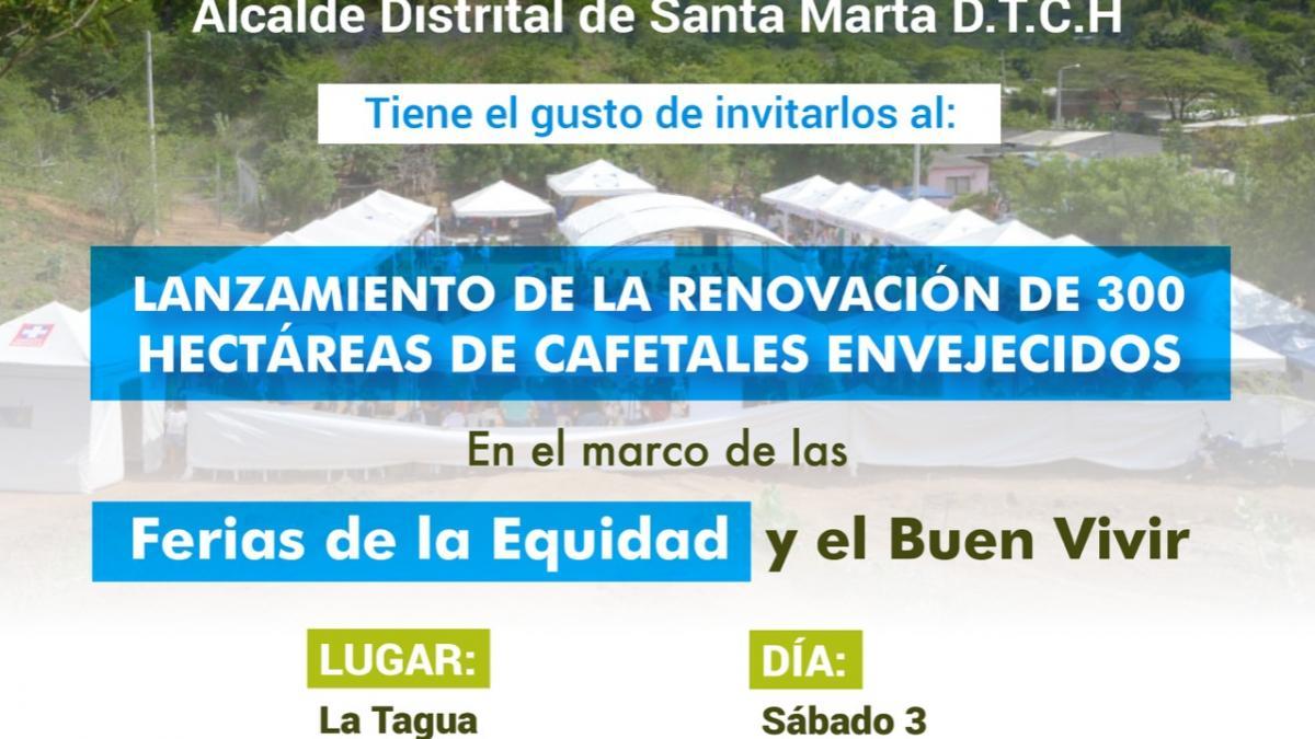 Distrito iniciará proyecto de renovación de 300 hectáreas de café envejecido