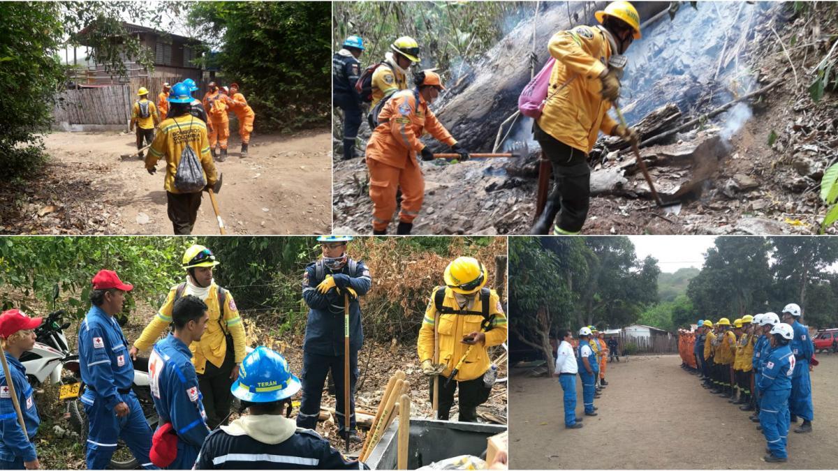 """""""El incendio forestal en Marquetalia, ya fue controlado por los Bomberos"""": Ogricc"""