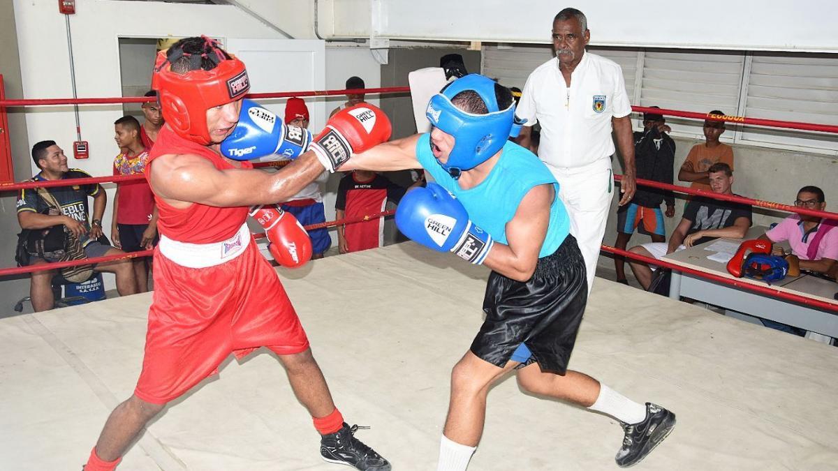 "A ""golpes agigantados"" avanza boxeo de Santa Marta"