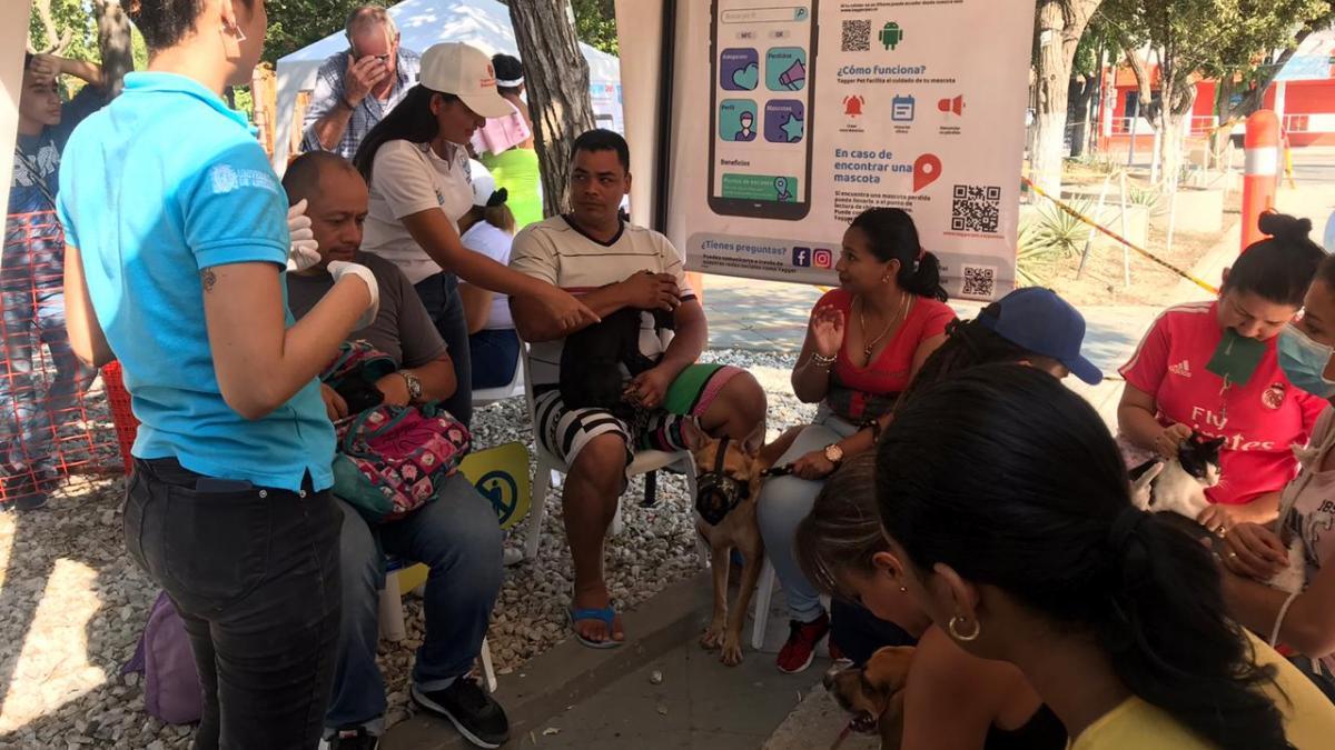 Al barrio Manzanares llegó la Jornada de Esterilización