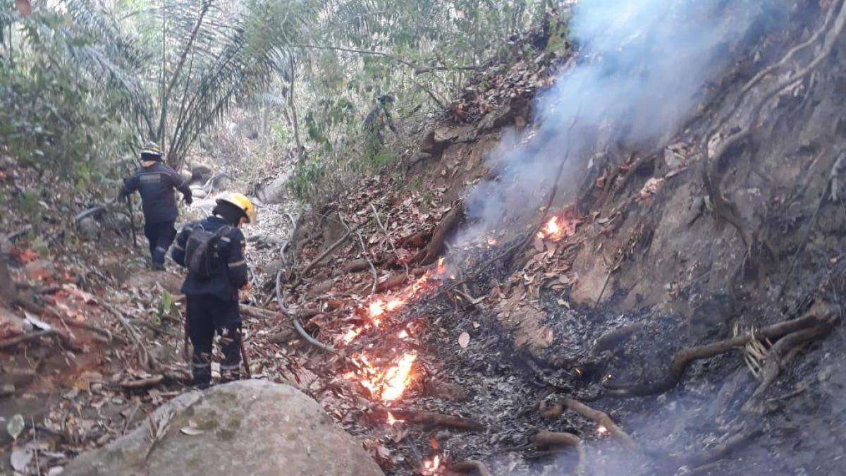 Alcaldía Distrital consigue apoyo aéreo para apagar incendios forestales en Tigrera y Don Jaca