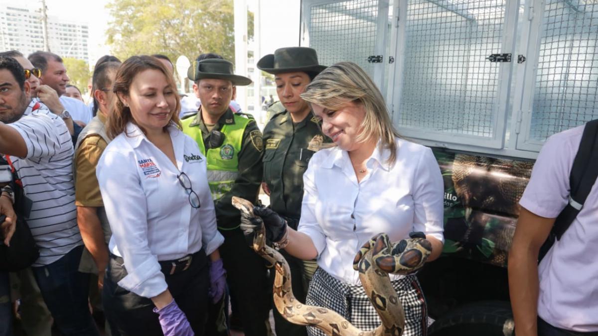 ¡Hit ambiental en Santa Marta! Ya está en marcha 1ra Unidad Móvil de Rescate de Fauna Silvestre del Caribe