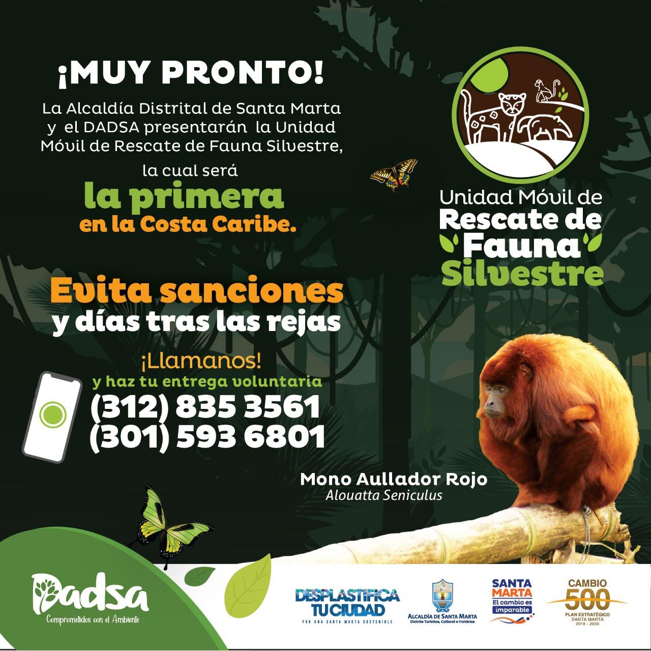 Santa Marta se prepara para ser líder en el Caribe en protección de fauna silvestre con Unidad de Rescate del Dadsa